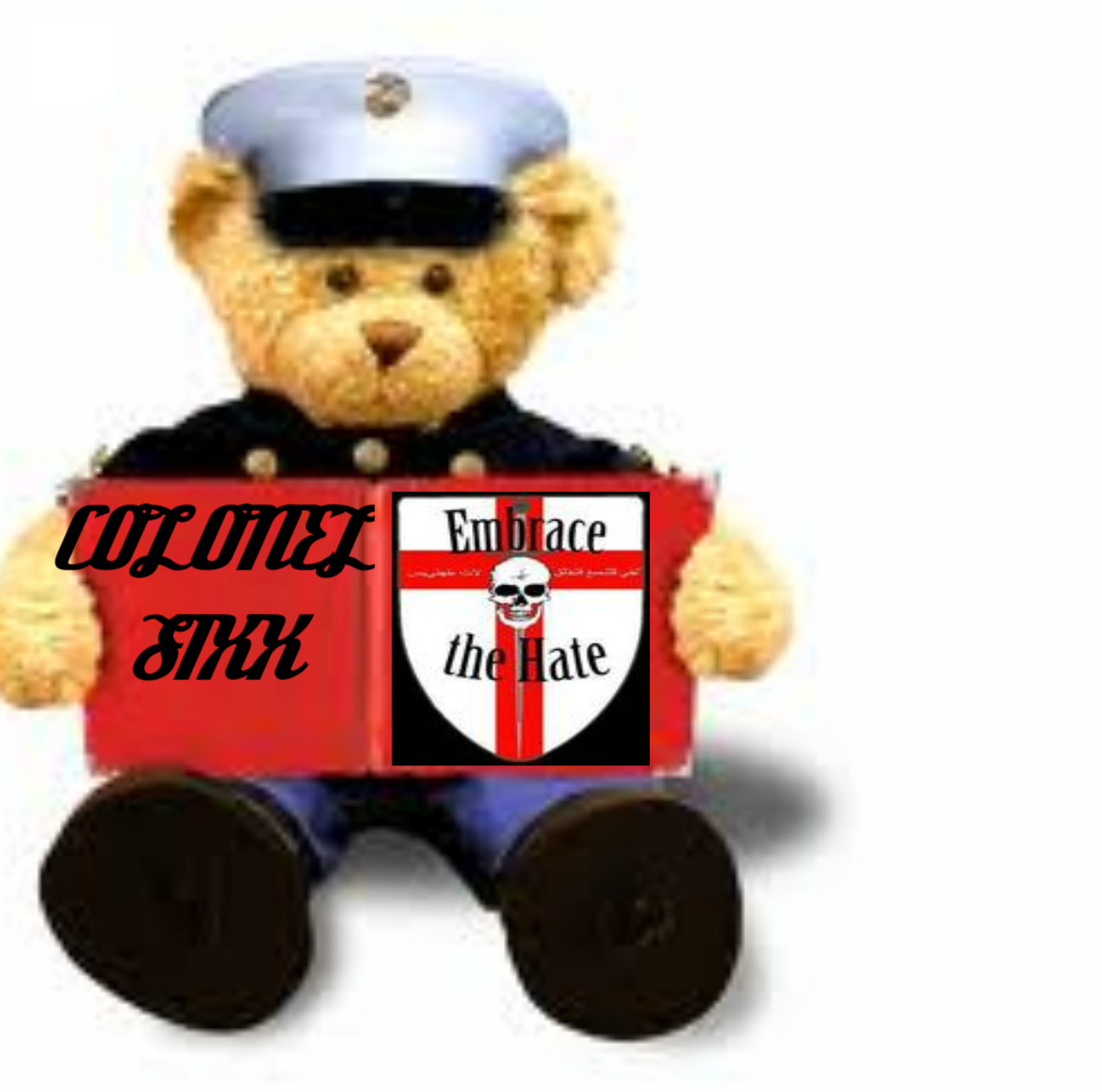 Toys For Tots Marine Bear : Anonymous colonel s